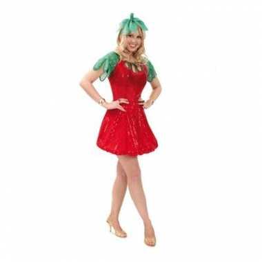 Carnaval  Aardbei jurkje haarband kostuum