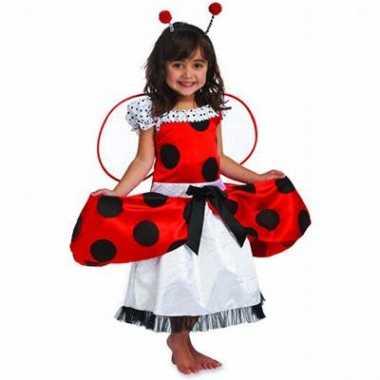 Carnavalskostuum Lieveheersbeestje