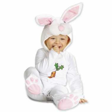 Carnaval  Dreumis kostuum konijntje