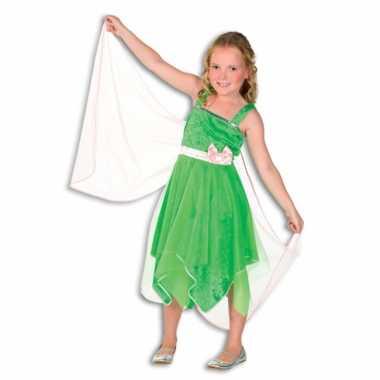 Carnaval  Groen elfjes jurkje meisjes kostuum