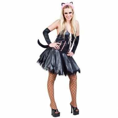 Carnaval katten/poezen jurk accessoires dames kostuum
