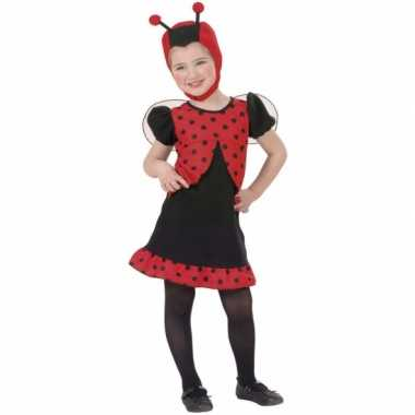 Lieveheersbeestje carnavalskostuum 10063804