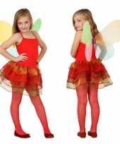 Vlinder kostuum meisjes